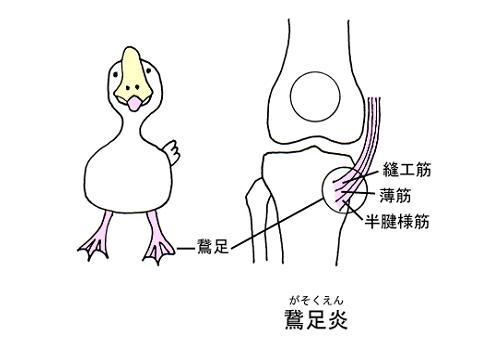 gasoku.jpg